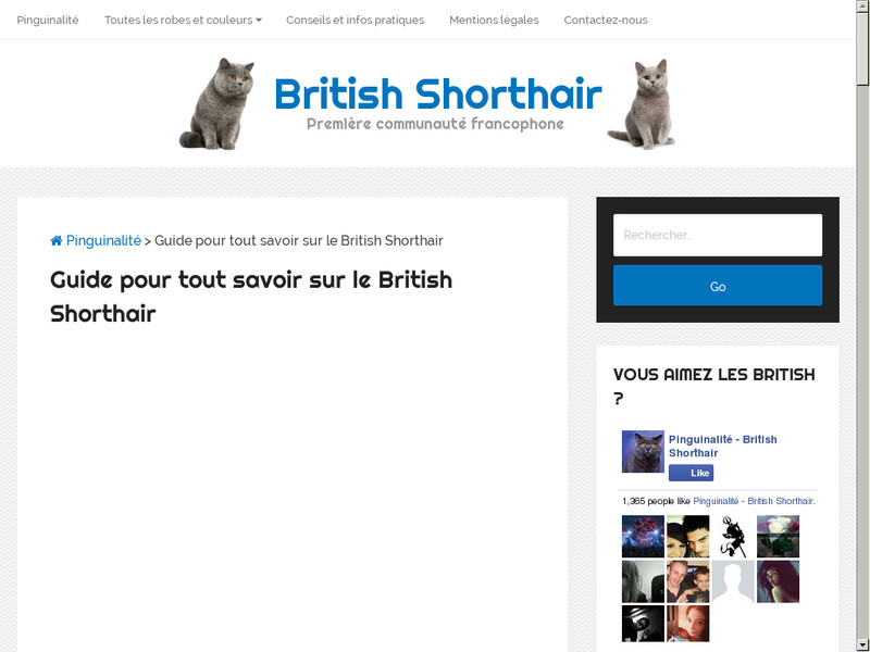 Comment conserver la ligne de son British Shorthair ?