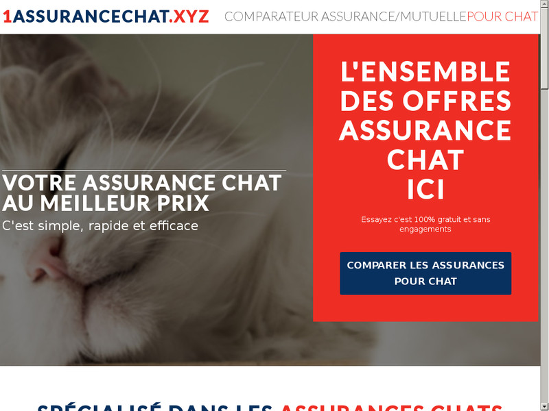 Assurance Chat