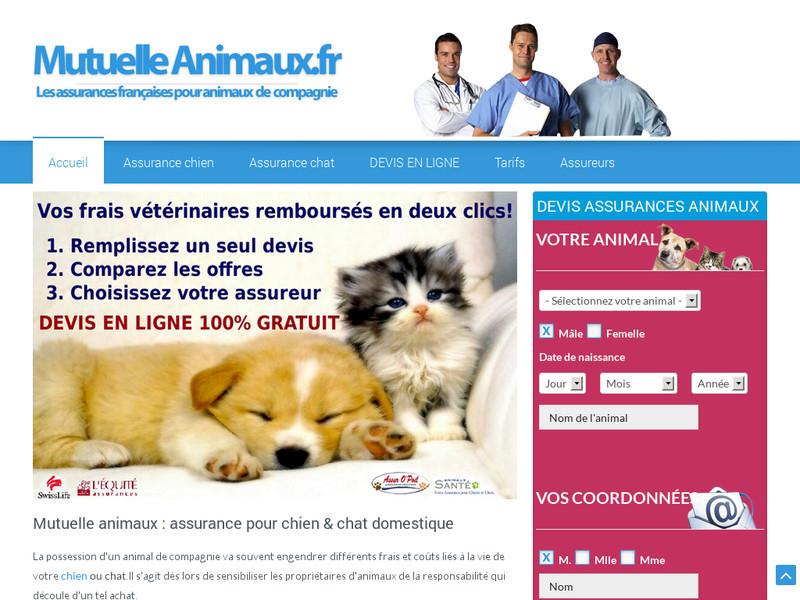 zoo avenue vente en ligne d 39 aliments et accessoires pour chiens et chats. Black Bedroom Furniture Sets. Home Design Ideas