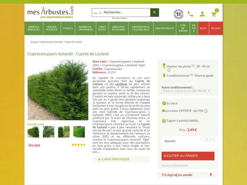 Mes arbustes vente en ligne de plantes et arbustes for Vente plantes arbustes
