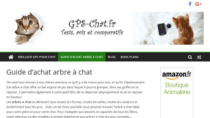 Le guide des arbres à chat