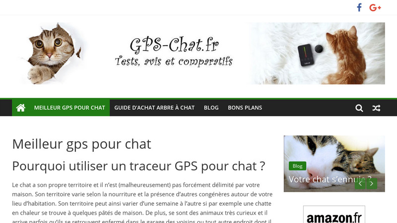 Gps chat