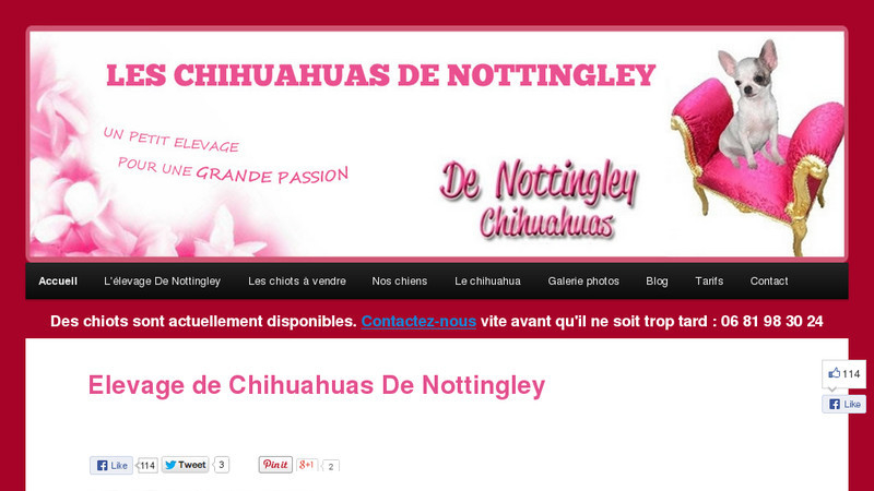 De Nottingley