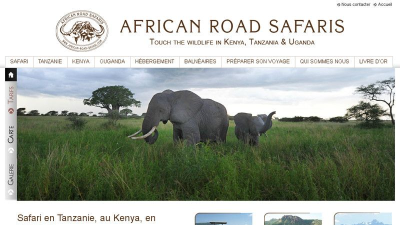 African Road Safari