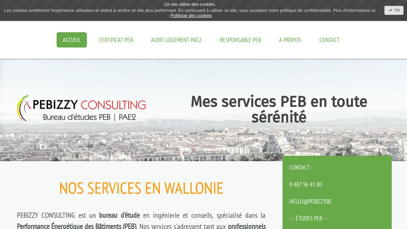 Pebizzy Consulting