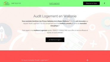 Page d'accueil du site : Pebizzy Consulting