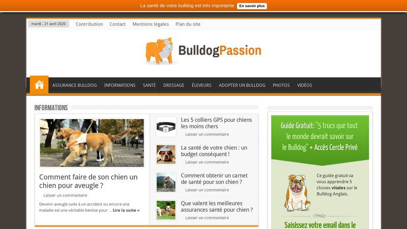 Bulldog Passion