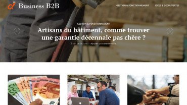 Page d'accueil du site : Business B2B