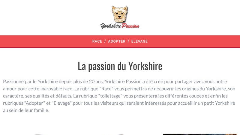 Yorkshire Passion